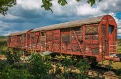 Foto del tren viejo abandonado en la rosaleda después de la tormenta de la primavera Fotos de archivo