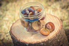 Foto del vintage, ciruelos en el tarro de cristal en tocón de madera en jardín el día soleado Foto de archivo