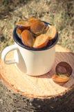 Foto del vintage, ciruelos en taza metálica en tocón de madera en jardín el día soleado Fotos de archivo