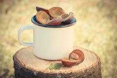Foto del vintage, ciruelos en taza metálica en tocón de madera en jardín el día soleado Imagenes de archivo