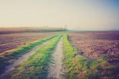 Foto del vintage del paisaje con el camino Foto de archivo libre de regalías