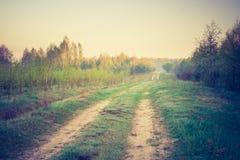 Foto del vintage del paisaje con el camino Foto de archivo
