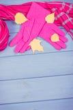 Foto del vintage, hojas otoñales con los guantes y el mantón para la mujer, ropa para el otoño o invierno, espacio de la copia pa Imágenes de archivo libres de regalías