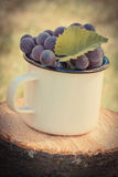 Foto del vintage, uvas con la hoja en taza metálica en tocón de madera en jardín el día soleado Fotos de archivo libres de regalías