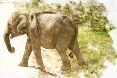 Foto del vitello dell'elefante con effetto pittorico Immagine Stock Libera da Diritti