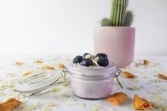 Foto del yogurt di mirtillo, con i mirtilli e le mandorle con il cactus nei precedenti e nello spazio immagine stock