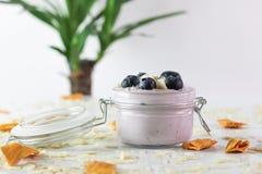 Foto del yogurt di mirtillo con le mandorle ed il mango secco, con il tronco brasiliano nei precedenti unfocused fotografia stock
