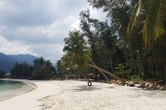 Foto della zona costiera con gli alberi contro il contesto delle colline Fotografia Stock
