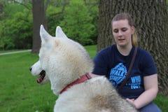 Foto delle donne che si siedono accanto al suo cane e ad un albero ad un parco Nell'ora legale i canadesi gradiscono uscire e god Immagine Stock