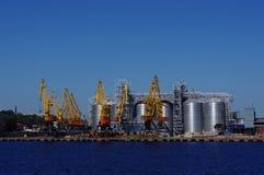 Foto delle gru del mare durante il funzionamento fotografia stock libera da diritti