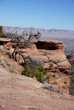 Foto delle montagne in Colorado Fotografie Stock Libere da Diritti