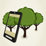 Foto der Bäume Stockfotos