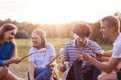 Foto der freundlichen Firma der Freunde haben Picknick das im Freien, braten Eibische über Lagerfeuer, haben positive Ausdrücke,  stockbilder