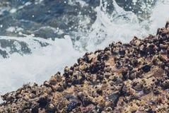 Foto der schönen klaren Seeozean-Wasseroberfläche mit Kräuselungen und des hellen Spritzens auf Meerblickhintergrund Lizenzfreie Stockfotos