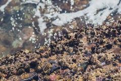 Foto der schönen klaren Seeozean-Wasseroberfläche mit Kräuselungen und des hellen Spritzens auf Meerblickhintergrund Stockbild
