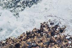 Foto der schönen klaren Seeozean-Wasseroberfläche mit Kräuselungen und des hellen Spritzens auf Meerblickhintergrund Lizenzfreies Stockbild