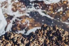 Foto der schönen klaren Seeozean-Wasseroberfläche mit Kräuselungen und des hellen Spritzens auf Steinmeerblickhintergrund Stockfotos