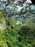 Foto der Sommerlandschaft des Gebirgsgebirgsmassivs vom Wald mit vielen grünen Farben im Kaukasus Stockbild