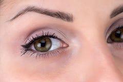 Foto des Auges der Brunettefrau Lizenzfreies Stockfoto