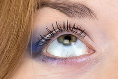 Foto des Auges der grünen Frau, das oben schaut Lizenzfreie Stockfotos