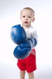 Foto des netten kleinen Boxers auf Weiß Stockbild
