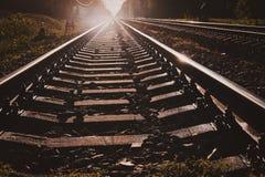 Foto des niedrigen Winkels von Schienen und von Lagerschwellen, mit Wald herum lizenzfreie stockfotografie