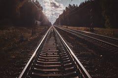 Foto des niedrigen Winkels von Schienen und von Lagerschwellen, mit Wald herum stockbilder