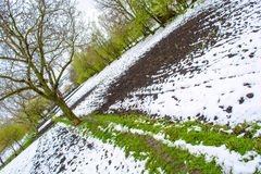 Foto des Schnees im Frühjahr gefallen während der Blütezeit stockfoto