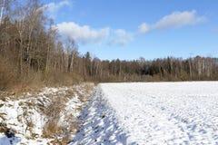 Foto des Schnees, Nahaufnahme Lizenzfreie Stockfotos