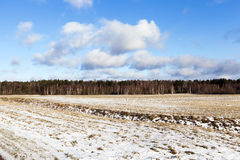 Foto des Schnees, Nahaufnahme Stockbilder