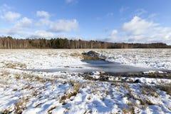 Foto des Schnees, Nahaufnahme Stockbild