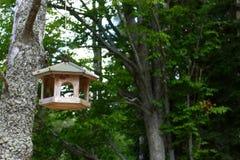 Foto des selbst gemachten hölzernen Vogelhauses im Wald Lizenzfreies Stockfoto