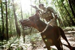 Foto des Soldaten mit Hund Lizenzfreies Stockfoto
