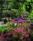 Foto des Sommerlandschaftshintergrundes eines blühenden dekorativen Parks Stockbild