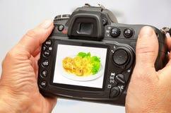 Foto des Vogels auf Kameraanzeige während der Hobbyphotographie in der Natur Stockfotografie