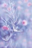 Foto di arte della lanugine di Snowy immagini stock libere da diritti