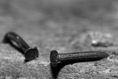 Foto di bianco del nero dei chiodi piegati fotografie stock libere da diritti