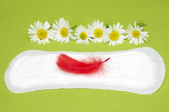 Foto di concezione di igiene Fiori medicinali della camomilla e piuma rossa sul cuscinetto mestruale Igiene sanitaria FO della do fotografia stock libera da diritti