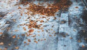 Foto di inverno con neve e foglie sulle tracce della strada Immagini Stock Libere da Diritti