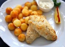 Foto di macro piatto di pesce con le patate Fotografie Stock