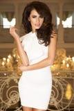 Foto di modo della donna castana elegante. Immagini Stock