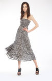 Foto di modo - ragazza bella in vestito grigio - podio Immagini Stock