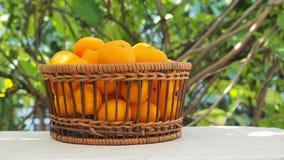 Foto di piccola dimensione di macro della merce nel carrello della frutta arancio Immagine Stock Libera da Diritti