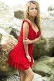 Foto di posa bionda attraente di signora. Immagine Stock