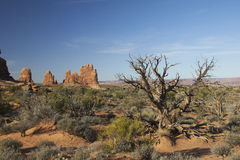 Foto di riserva di formazione rocciosa rossa, sosta nazionale degli archi Immagini Stock Libere da Diritti