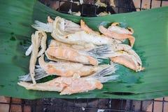 Foto di riserva - griglia di color salmone dell'aletta Fotografia Stock Libera da Diritti