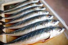 Foto di riserva - il pesce di saba ha fermentato il sale e il suace Fotografia Stock Libera da Diritti