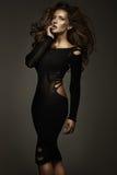 Foto di stile di moda di giovane bellezza Immagini Stock