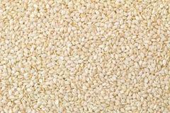 Foto di struttura del fondo del primo piano dei semi di sesamo bianchi Fotografie Stock