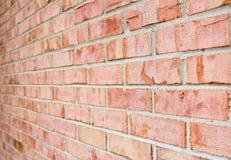 Foto di struttura di prospettiva del muro di mattoni Immagine Stock